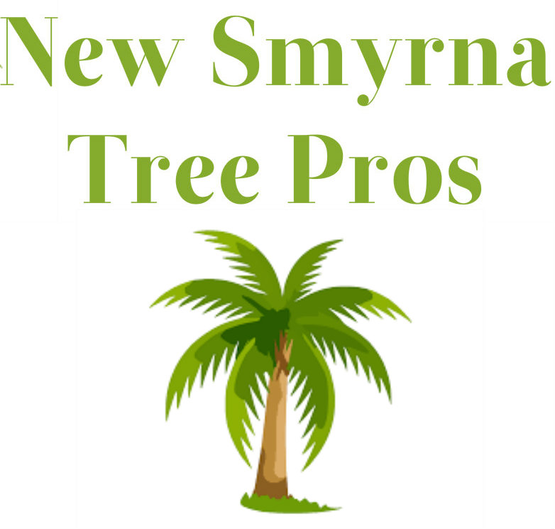 Tree Removal New Smyrna