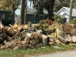 Land Clearing New Smyrna Beach