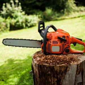 Tree Removal Tools New Smyrna Beach